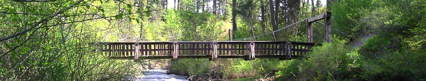 trail bridge over a Northeast Washington creek