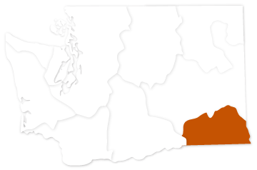 Snake River salmon recovery region in Washington state