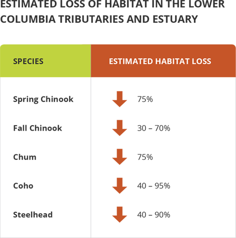 Estimated loss of habitat in the Lower Columbia tributaries and estuary