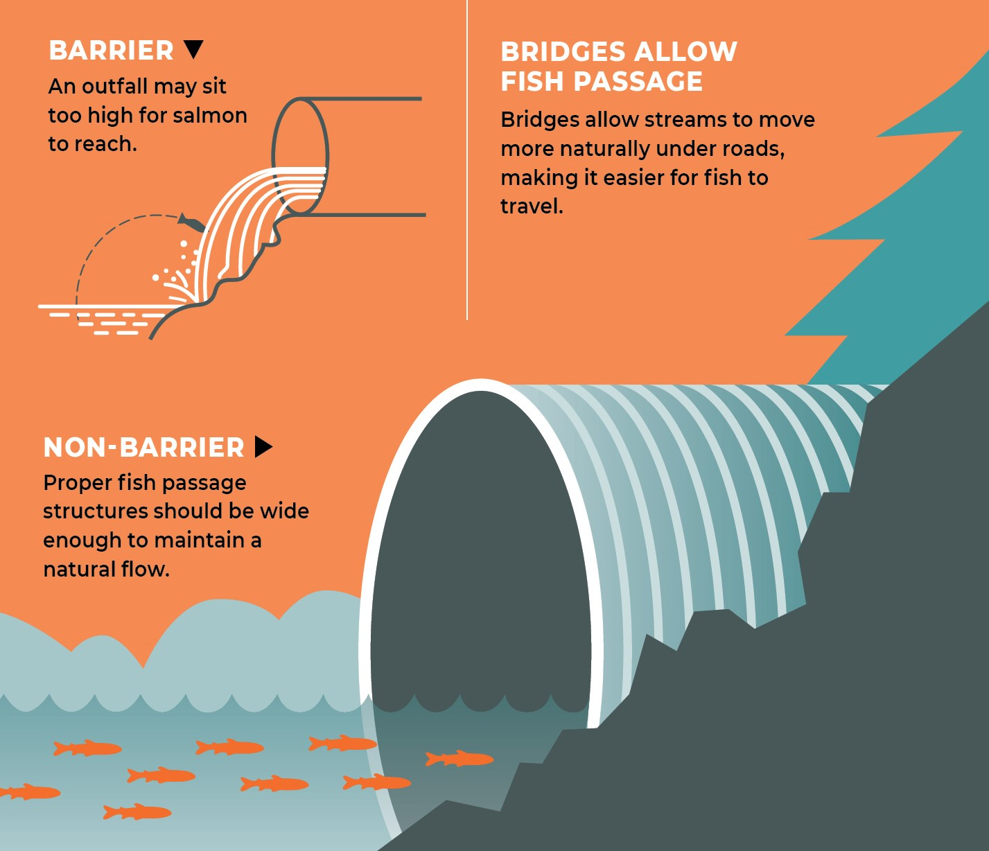 Graphic showing good and bad culverts